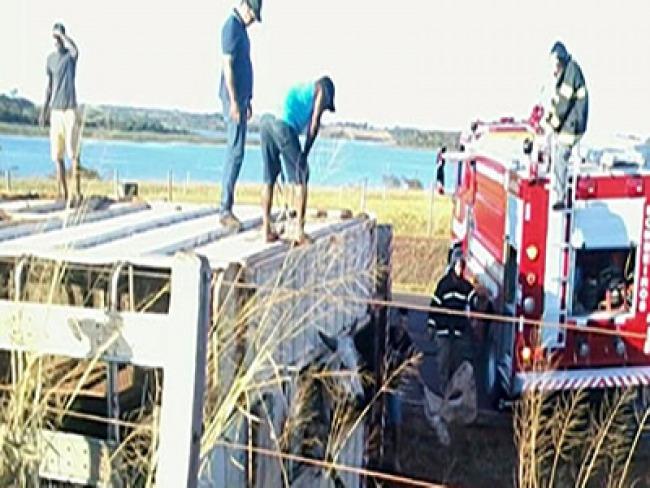 Bombeiros são mobilizados para salvar bois presos em ferragem de carreta